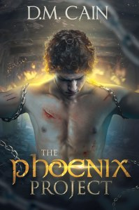 The Phoenix Project Cover - Booktrope